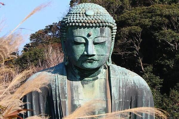 The Buddhist tradition of refraining from meat